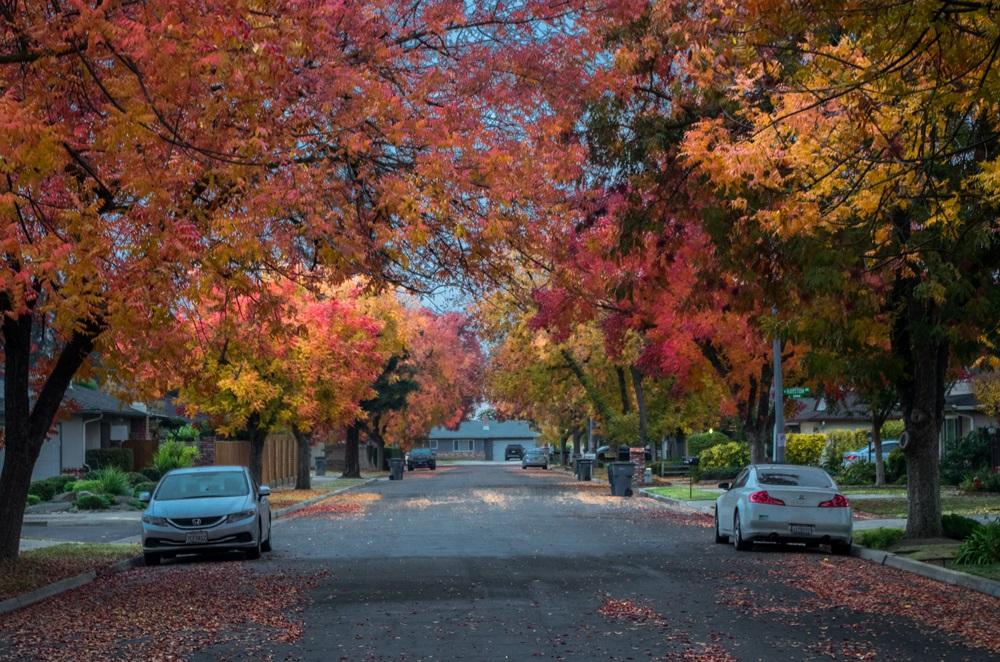 Explore Fresno Neighborhoods And Community |Fresno Neighborhoods
