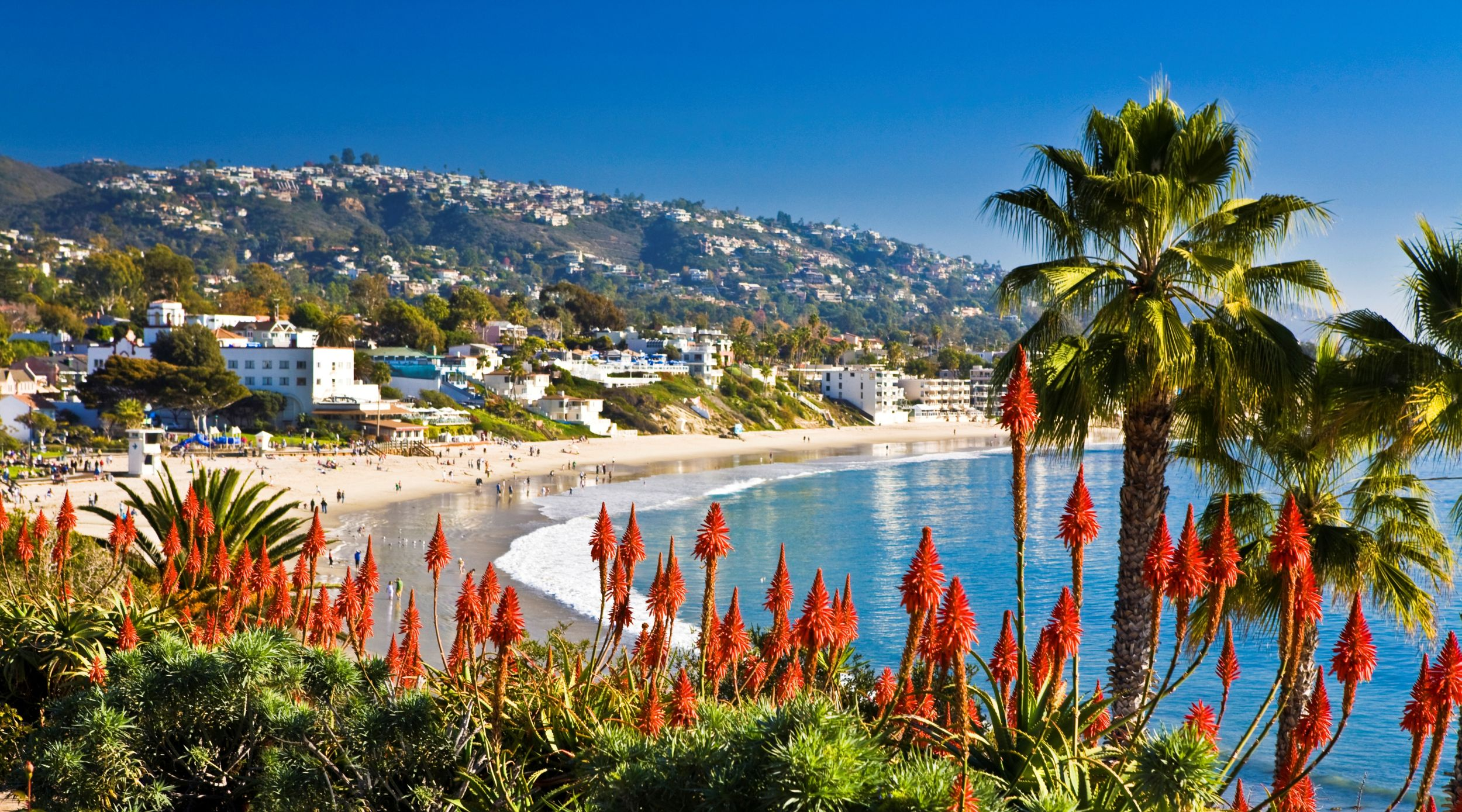 Want to know if Laguna Beach is a good investment, either to live or to rent? See if Laguna Beach should be your next hometown.