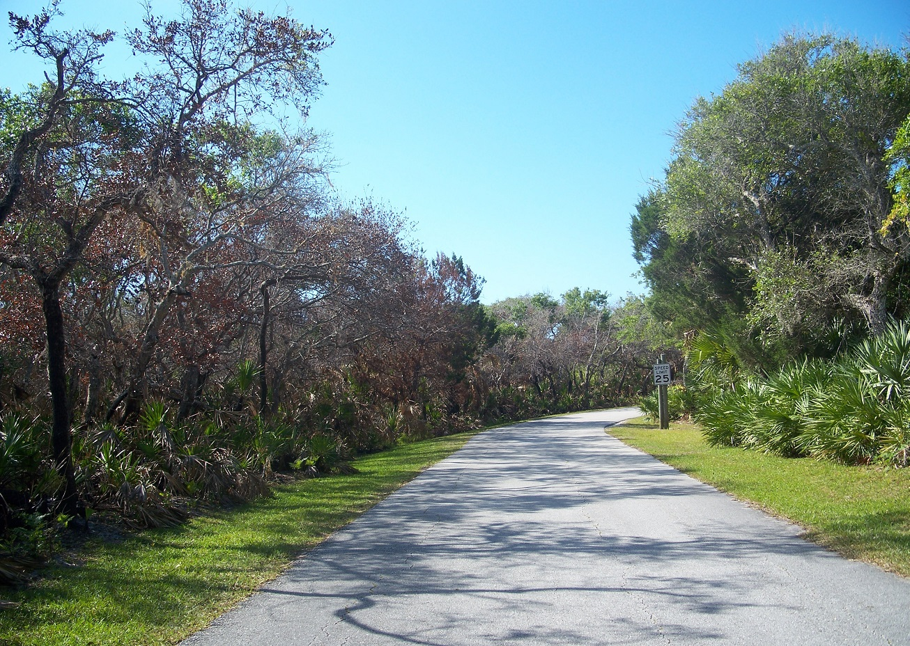 Homes For Sale In Apollo Beach Fl: Tampa Suburbs Real Estate Trends