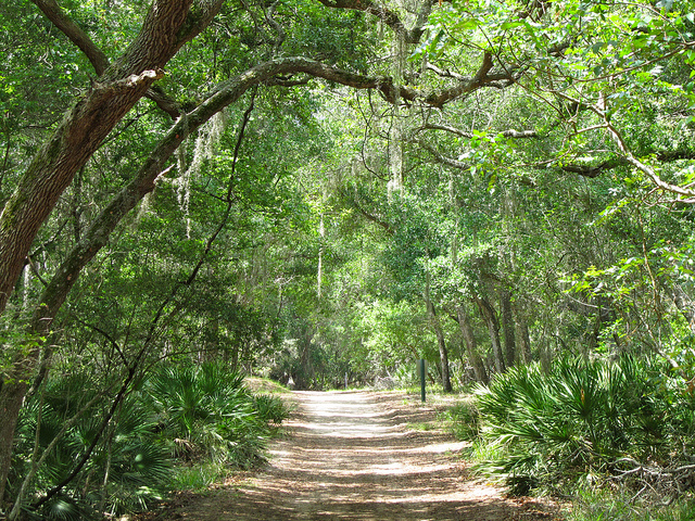 Nocatee Real Estate: Jacksonville Suburb Guide
