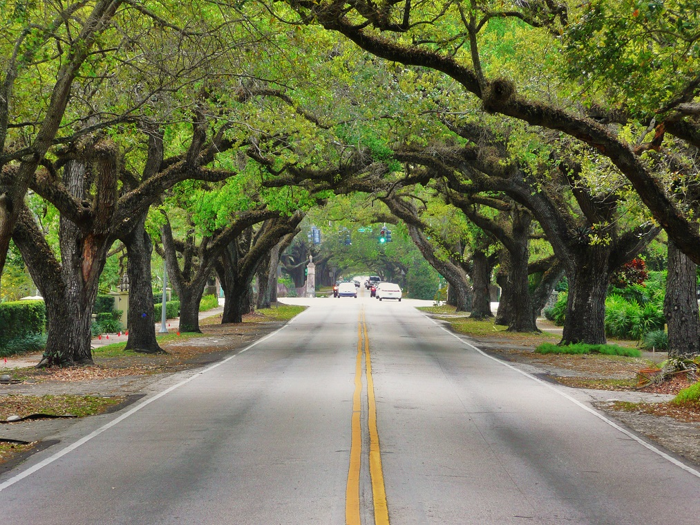 Coral Gables Homes for Sale: Miami Suburbs Real Estate Trends